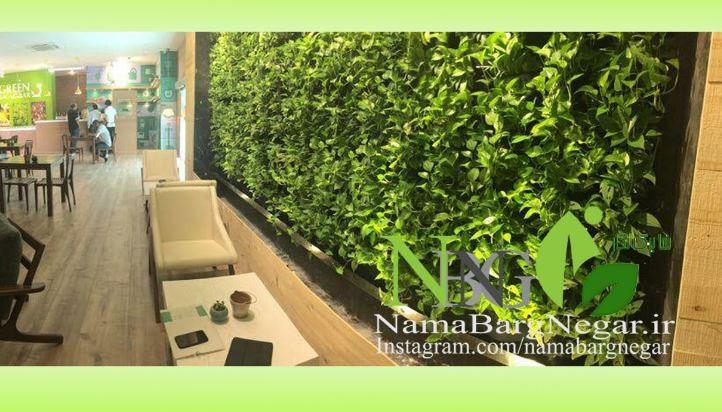 تصویر شماره شرکت نما برگ نگار - دیوار و بام سبز