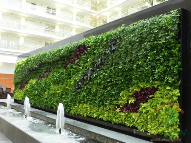 تصویر شماره طراحی و معماری دیوار سبز